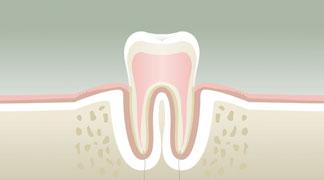 parodontologie BORDEAUX 1